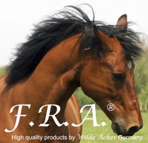 Freedom Riding Articles